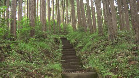 Hinohara070911