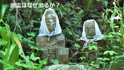 Sekibutu021