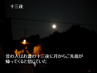 Moon024