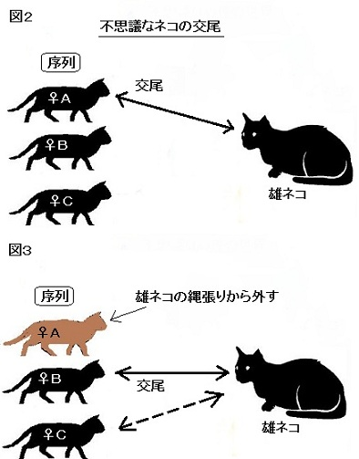 Cat325