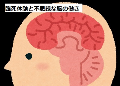 Brain031