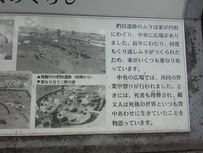 Minami025