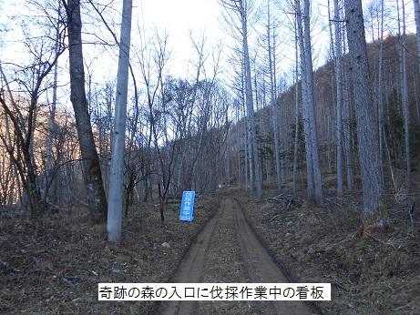Kisekimap005