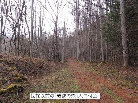 Kisekimap010