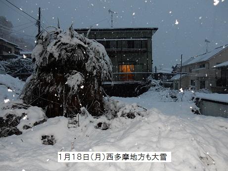Jiba1602