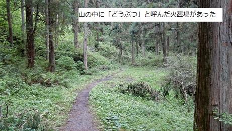 Kofun113