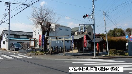 Torii316